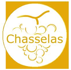 Logo Chasselas Vin Cépage